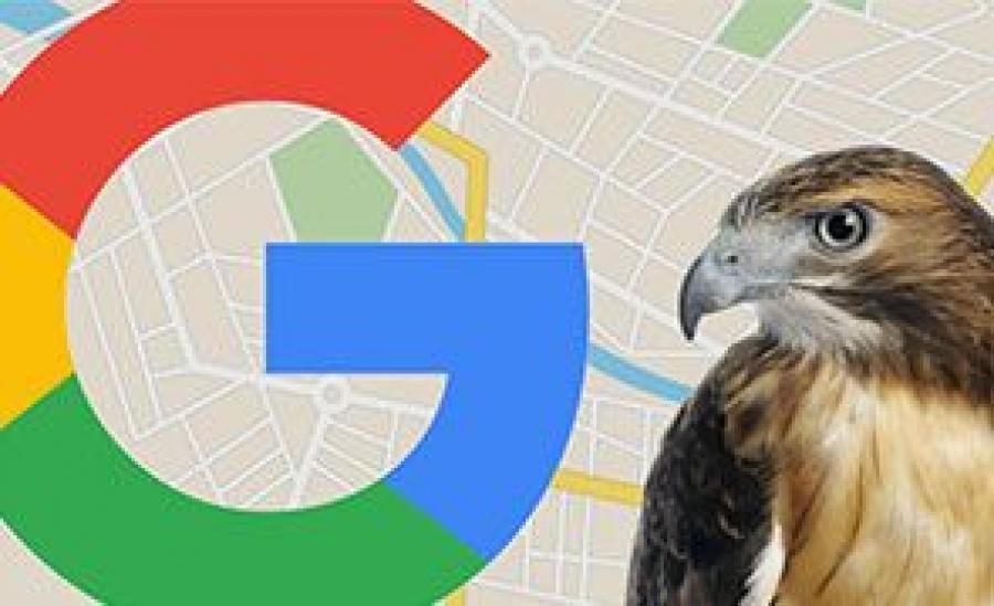 الگوریتم هاک (hawk) گوگل